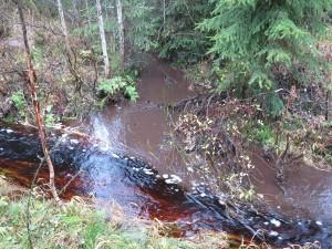 Haukisuon turvetuotantoalueelta virtaa vesi Kallio-Níkaran tien ojaan mistä Rajajokeen ja edelleen Petäjäveden ja Jämsän kautta aina Päijänteeseen saakka