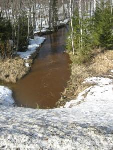 Kuva 2. Tulvavesissä on suuri kiintoaines- ja humuspitoisuus