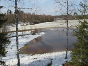 Kuva 3. Päästö on virrannut Petäisjärveen