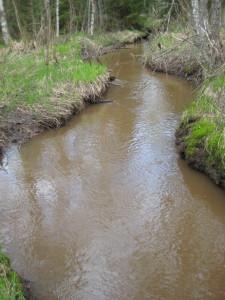 Kuva4b-paksunruskea-purovesi-5km-turvesuon-välialtaalta